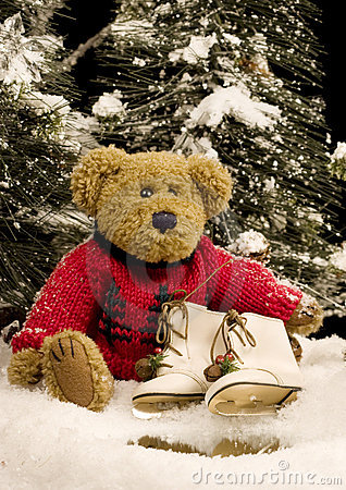 Free Teddy Bear With Ice Skates - Vertical Royalty Free Stock Photo - 11562495