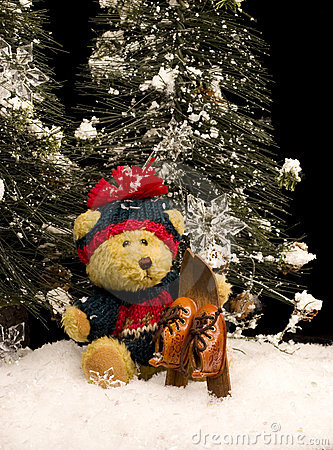 Free Teddy Bear With Skis Stock Images - 11560254
