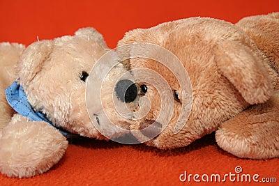 Teddy bears #8