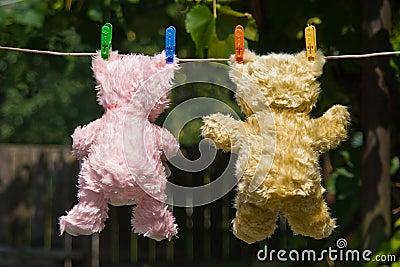 Teddy bears back view
