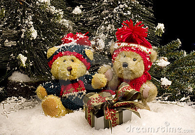 Teddy Bears with Gift - horizontal