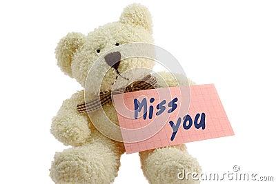Teddy - missing