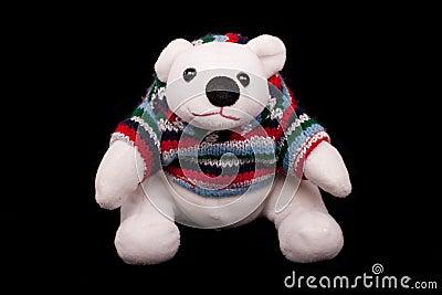 Teddy Polar Bear