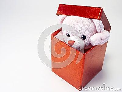 Teddy Present