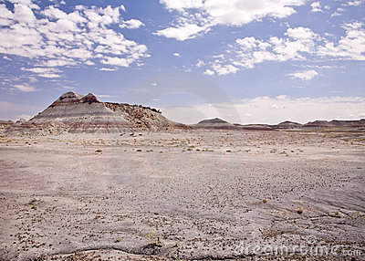 Tee-Pee Hills Petrified Forest National Park