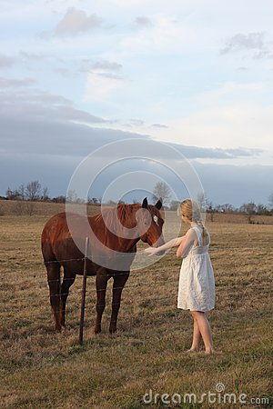 Teen Girl With a Horse