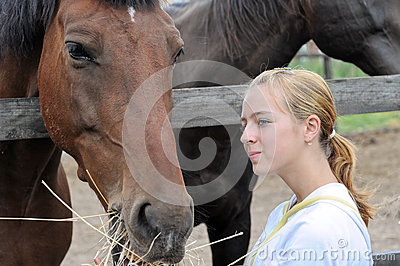 Teenage girl feeding horses in the farm