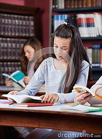Teenage Schoolgirl Studying In Library
