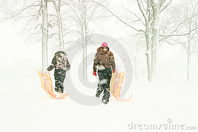 Teenagers with sleds in forest