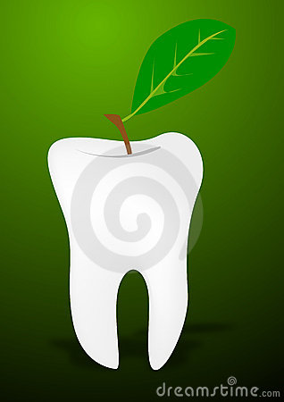 Teeth and leaf