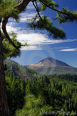 Free Teide Stock Photography - 9217012
