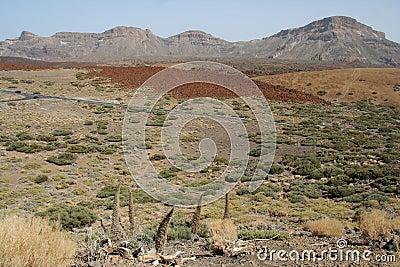 Teide Desert