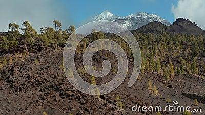 Teide wulkan zakrywający z śnieżnym а rzadkim zjawiskiem dla wysp kanaryjskich zdjęcie wideo