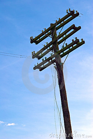 Free Telephone Or Telegraph Pole Royalty Free Stock Photo - 11792765