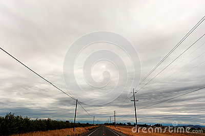 Telephone poles line a road in the country