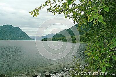 Teletskoye lake, bay stone bay. Gorny Altai