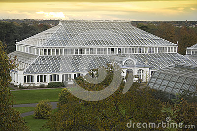 Temperate House at dusk