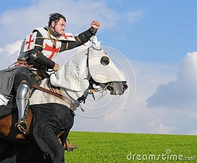 Templar的国王