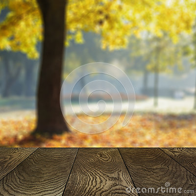 Template from oak surface and natural blured background