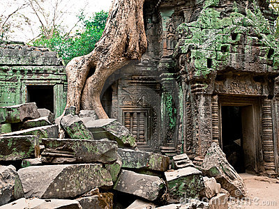 Temple de Ta Prohm, Angkor Wat, Cambodge