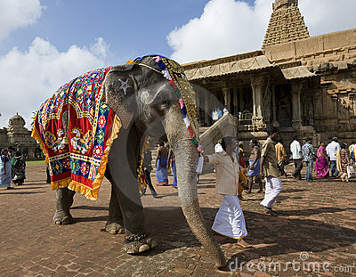 Temple Elephant - Thanjavur - India Editorial Photography