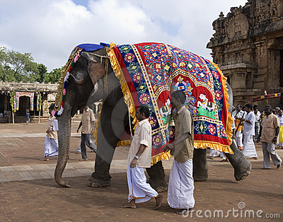 Temple Elephant - Thanjavur - India Editorial Stock Image