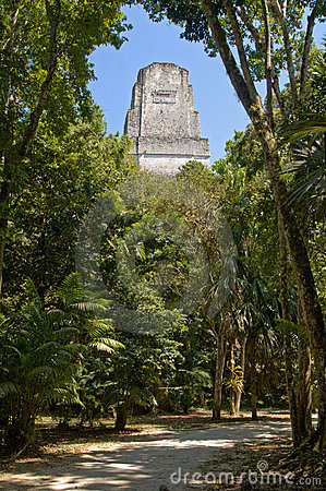 Free Temple III In The Jungle Of Tikal Peten Royalty Free Stock Images - 16307209