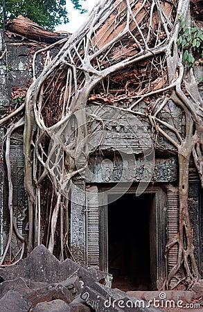 Temple ruins, Angkor wat, Cambodia