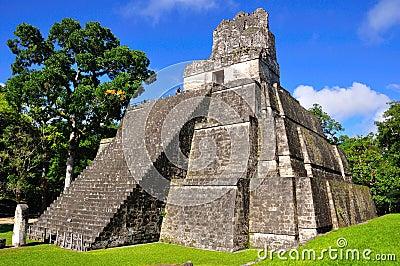 Templo antiguo del maya de Tikal, Guatemala