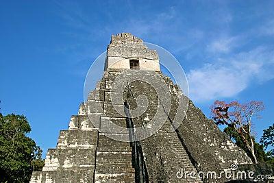 Templo maya Tikal, Guatemala