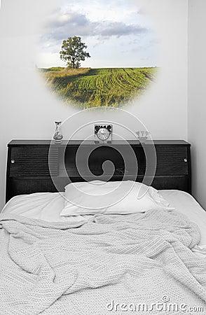 Tempo di sogno (misto, colore ed in bianco e nero)