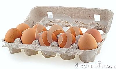 Ten eggs in the cassette