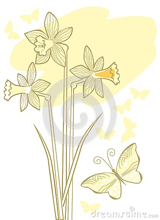Tender background with narcissuses