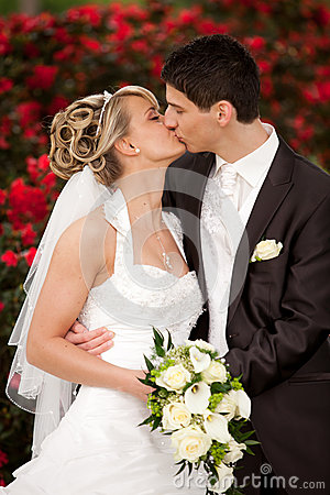Free Tender Wedding Kiss Red Roses Stock Image - 25131141