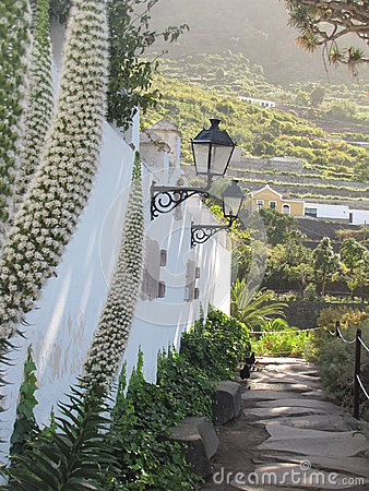 Free Tenerife, Canary Islands, Spain Royalty Free Stock Photography - 67384097