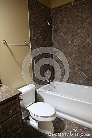 Tennesee Home Guest Bathroom