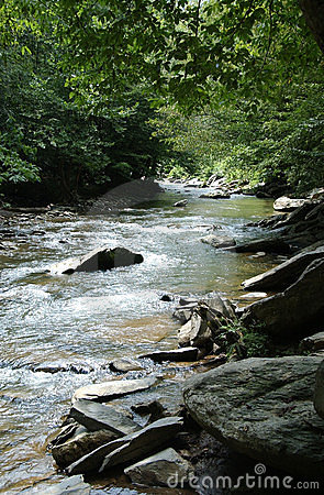 Tennessee Creek