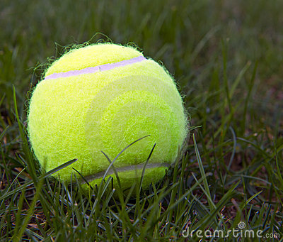 Tennis Ball on Natural Grass