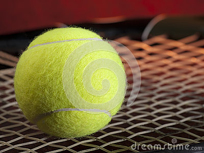 Tennis ball on the racquet