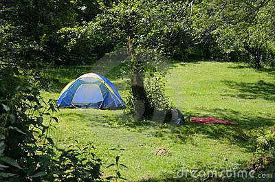 Tent near a forest