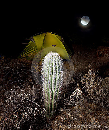 Tent in night
