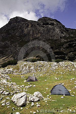 Tents into the wild