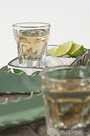 Tequila served shots - selective focus