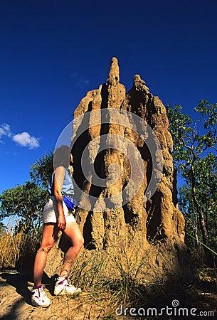 Termite Mound in Northern Australia