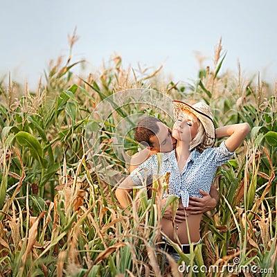 Ternura em um campo de milho