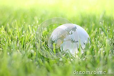 Terra erba di eco della natura nella bio-