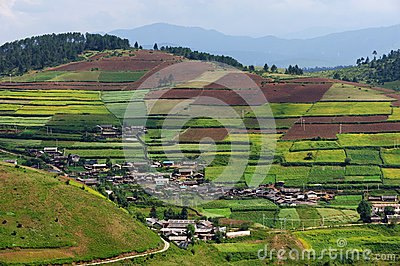 Terraced fields and village