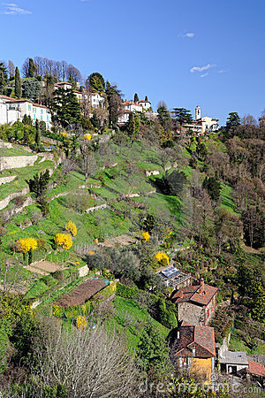 Terraced gardens to San Vigilio, Lombardy, Italy
