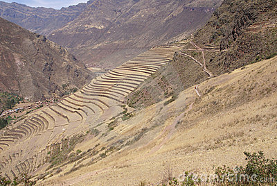 Terraced Inca fields and ruins of village