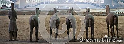 Terracotta cavalry
